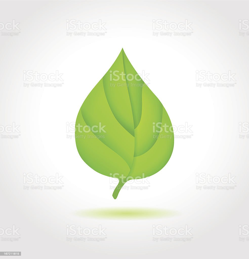 Green leaf. Vector icon royalty-free stock vector art