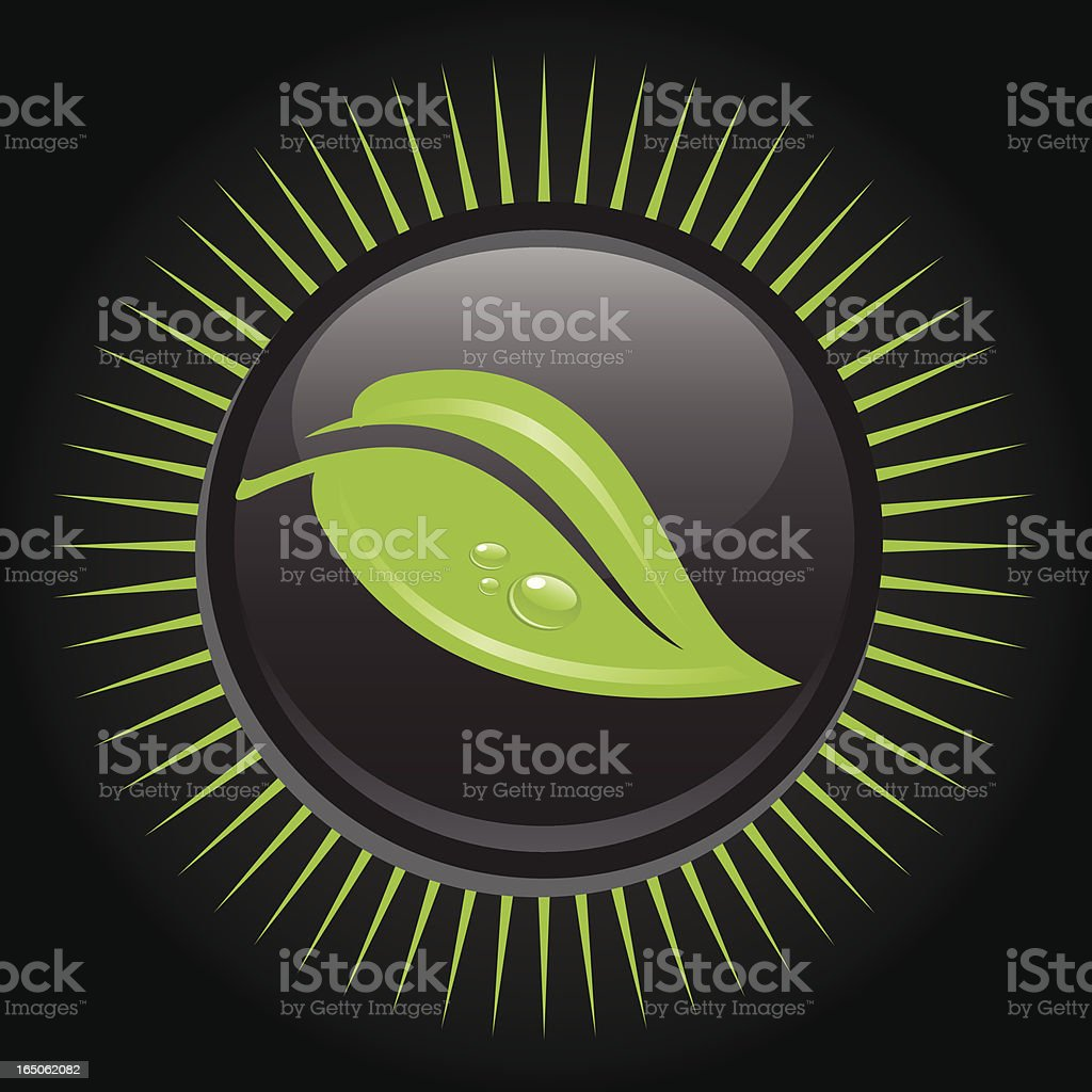 Green Leaf royalty-free stock vector art