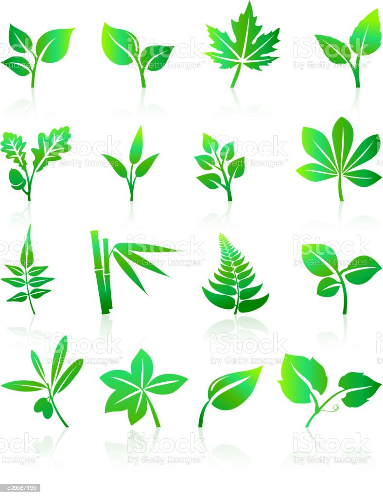 Green Leafs Icons vector art illustration