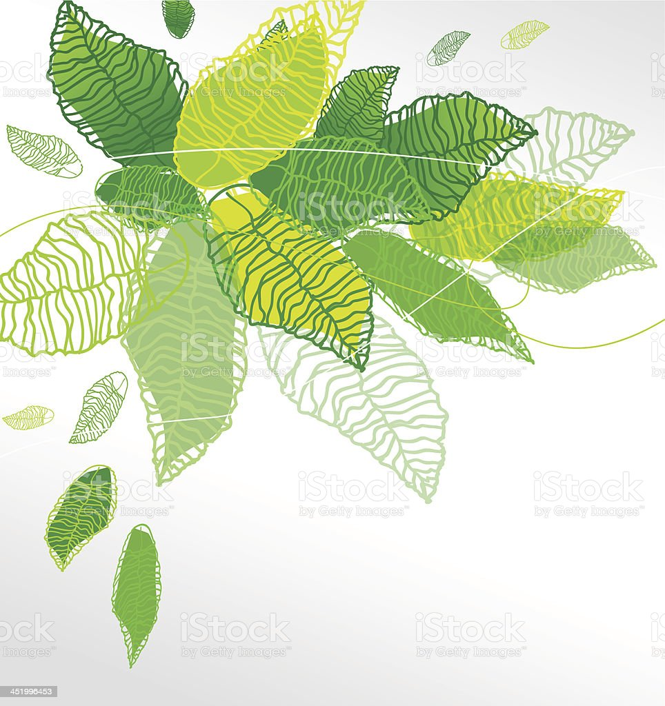 Green leafs royalty-free stock vector art