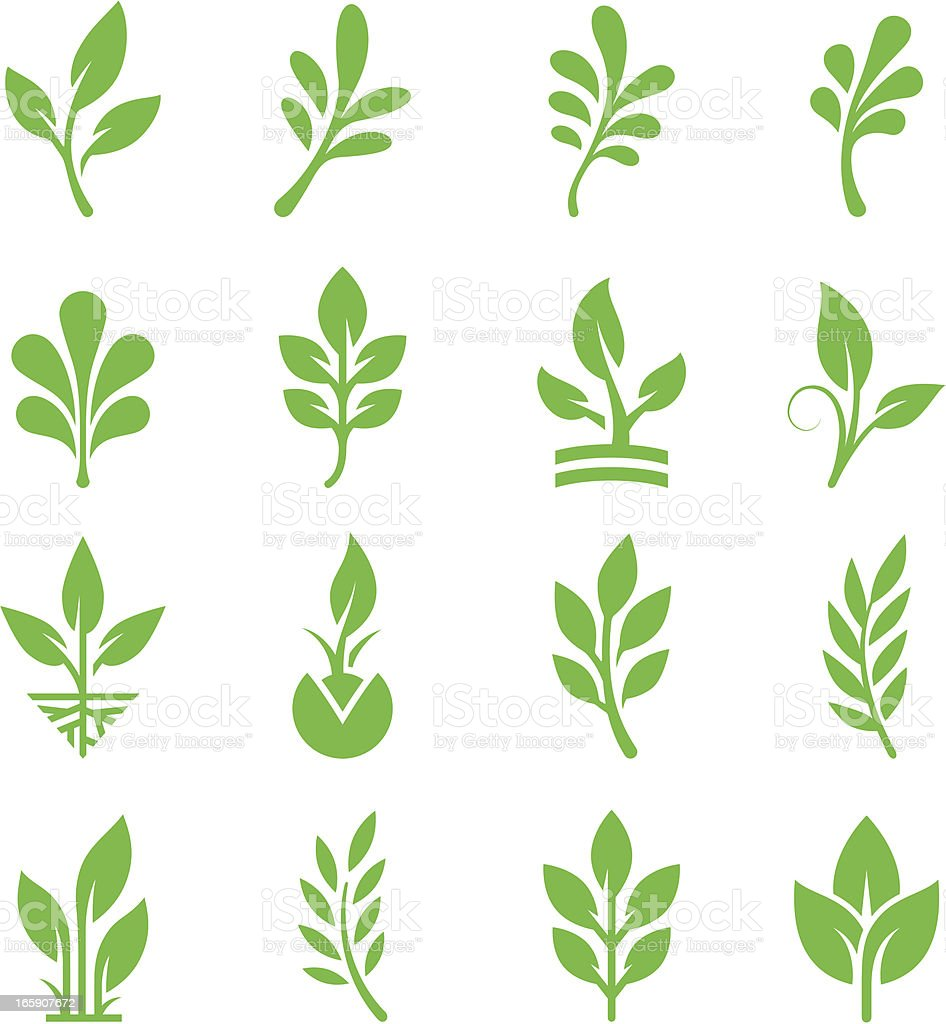 Green Leaves & Branches Icon Set vector art illustration