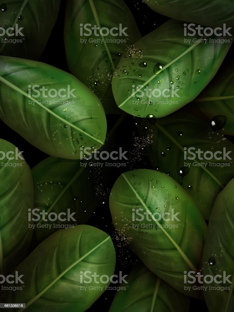 green leaves elements vector art illustration