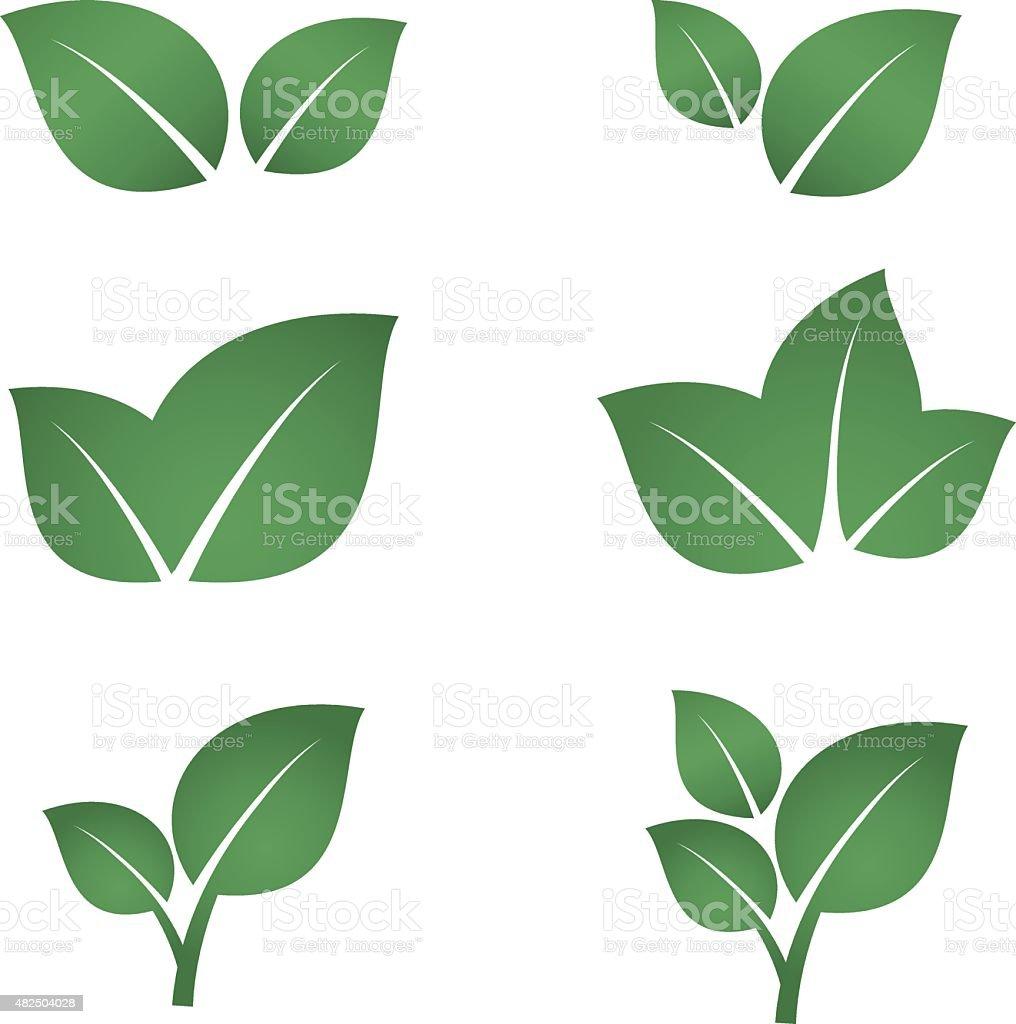 Зеленые листья Набор иконок Сток Вектор Стоковая фотография