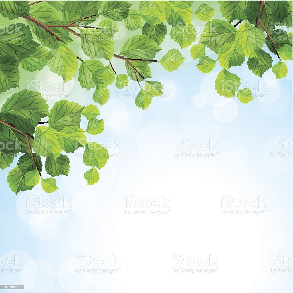 Green leaves tree branches vector background vector art illustration