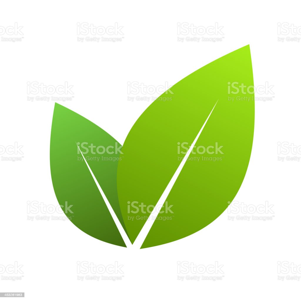 Green leaves royalty-free stock vector art