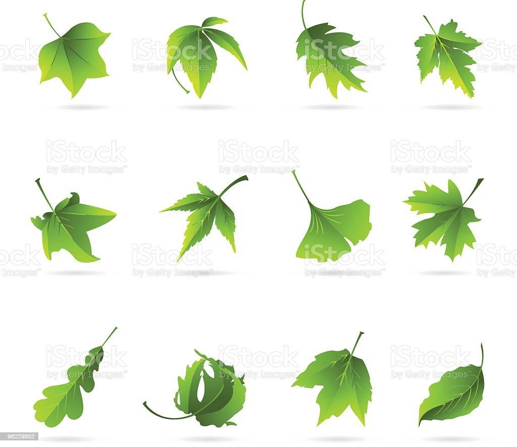 Green Leaves vector art illustration