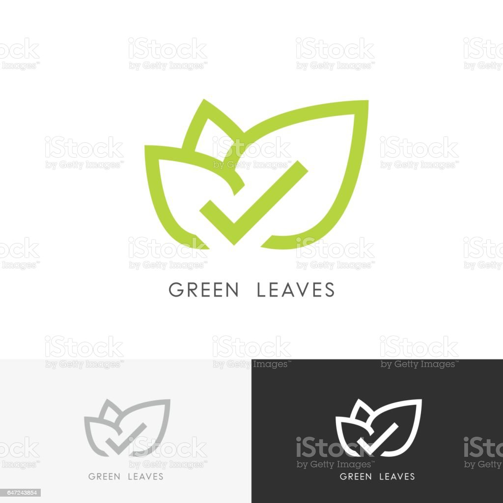 Green leaves with check mark vector art illustration