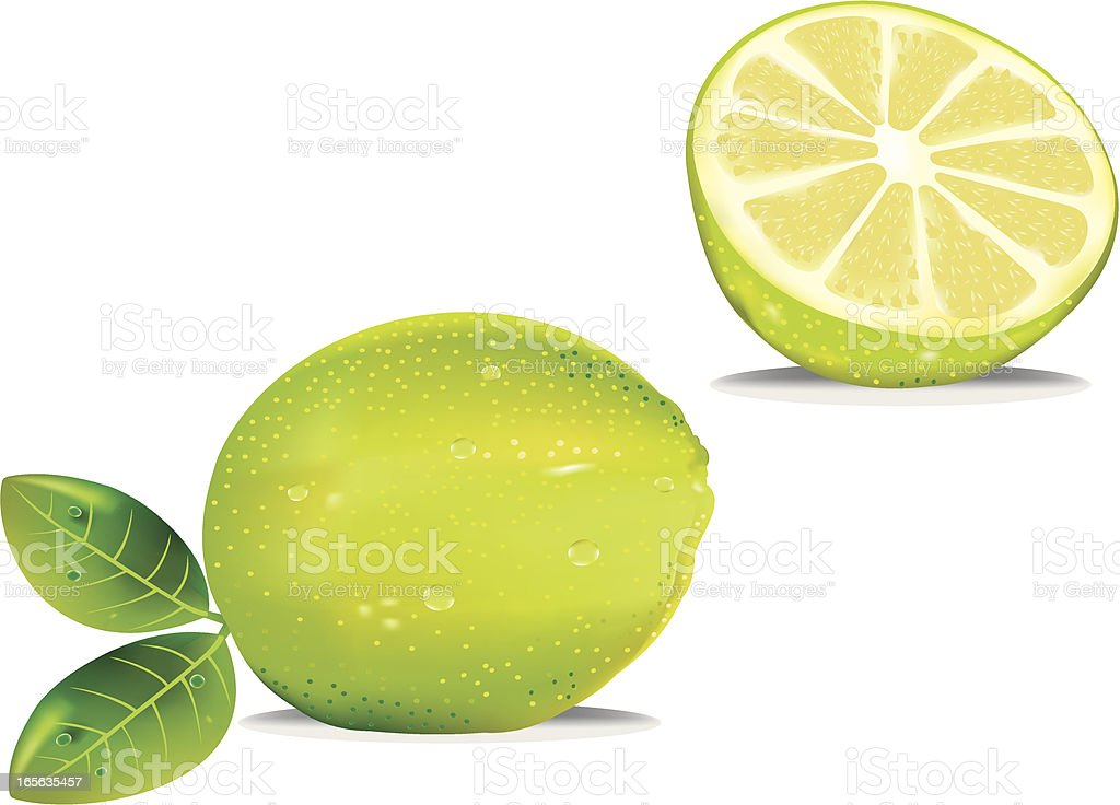 Green lime royalty-free stock vector art