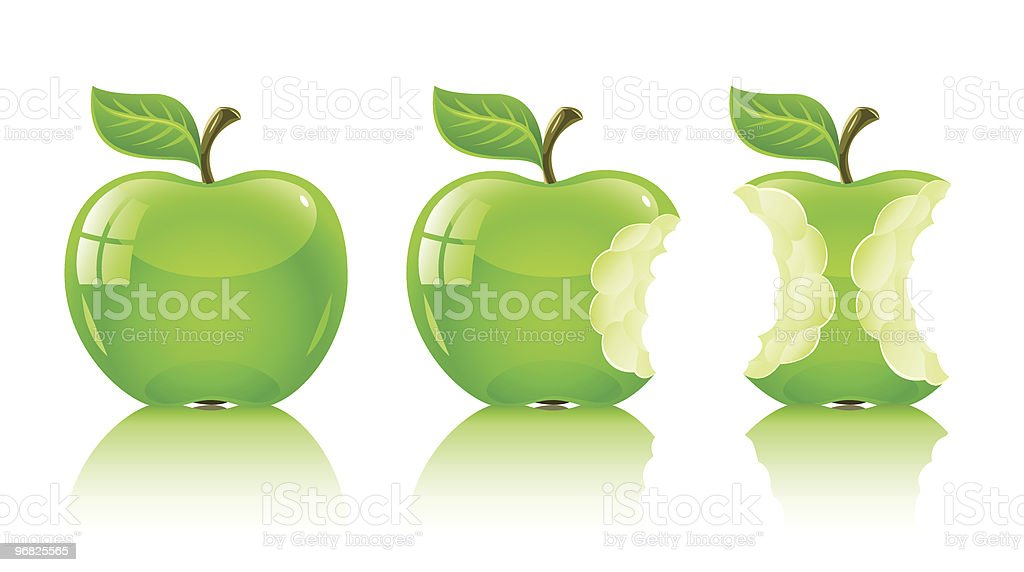 green nibbled apple with leaf vector art illustration