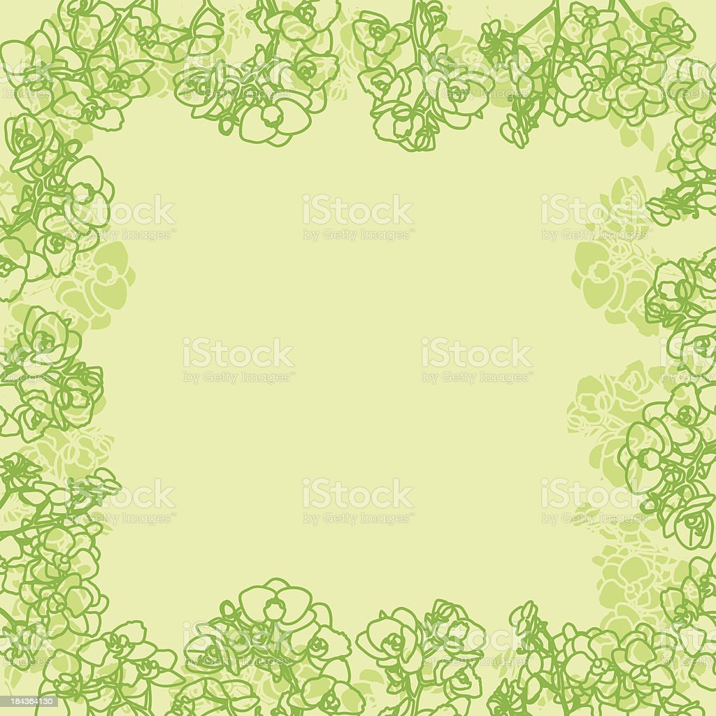 Green orchids card royalty-free stock vector art