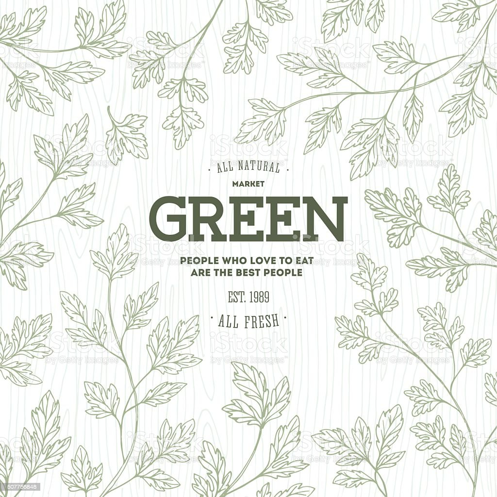 Green parsley design template. Organic background. Vector illustration vector art illustration