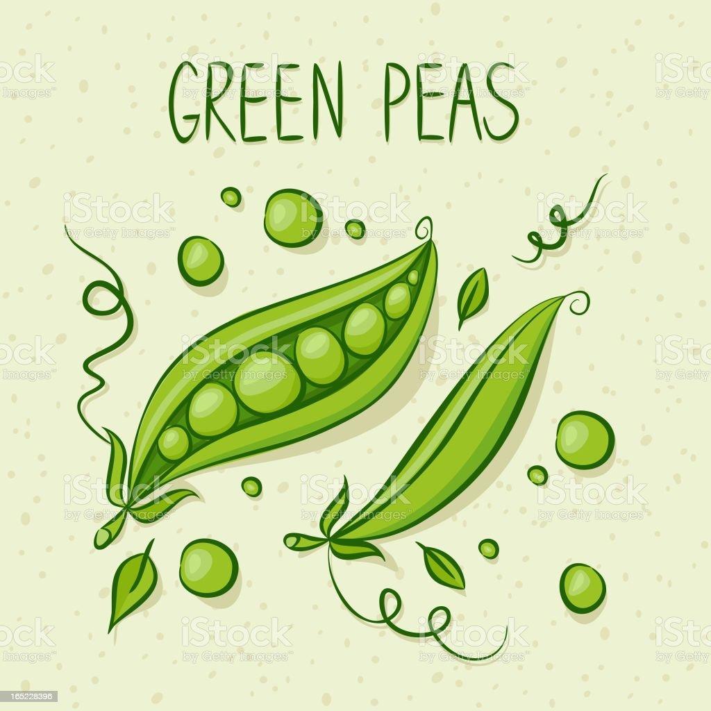 Green Peas royalty-free stock vector art