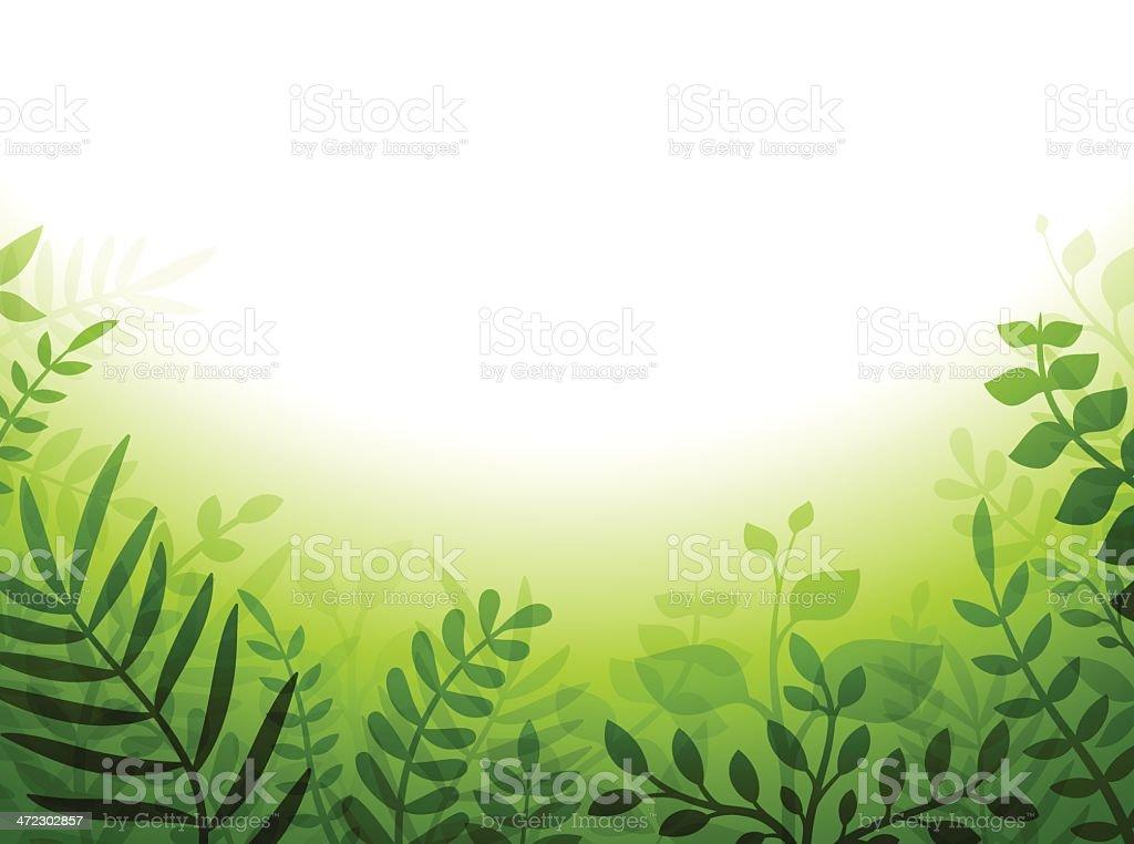Green Plant Border vector art illustration