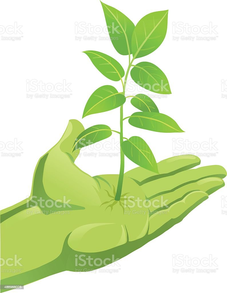 Green Plant Growing Out of Hand vector art illustration