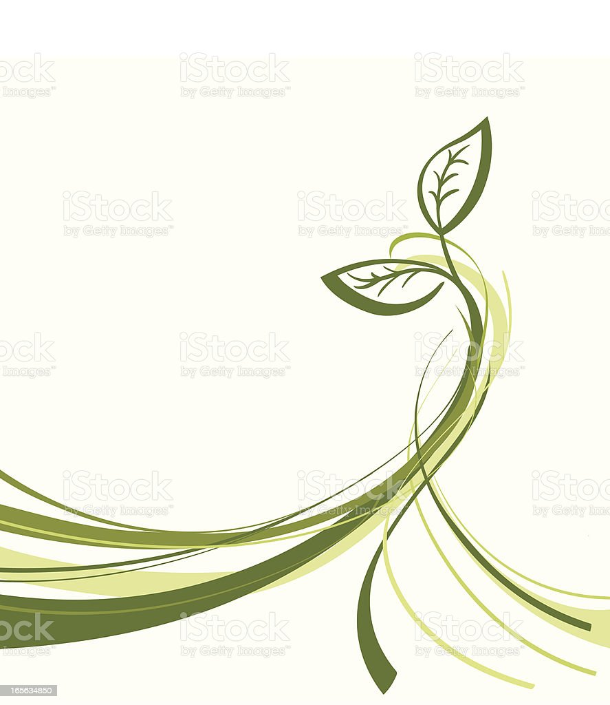 Green plant growing upwards on A white background royalty-free stock vector art