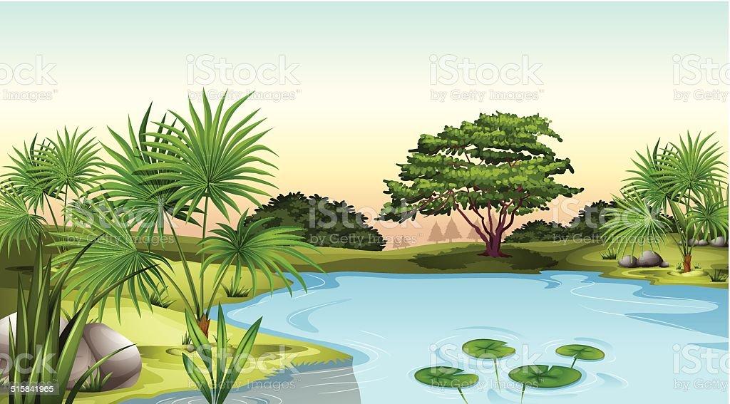 Green plants surrounding the pond vector art illustration