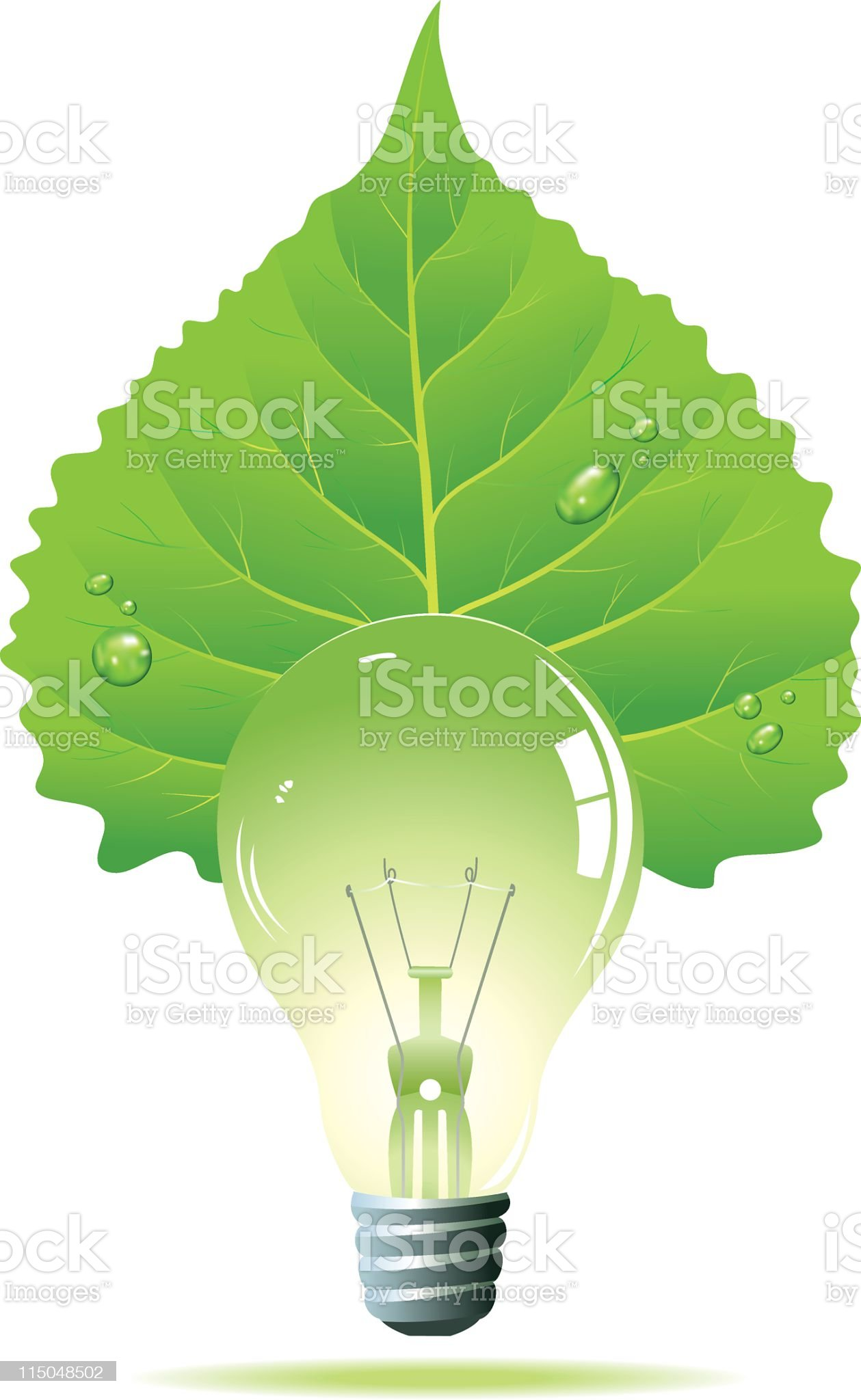 Green Poplar Leaf & Light Bulb royalty-free stock vector art