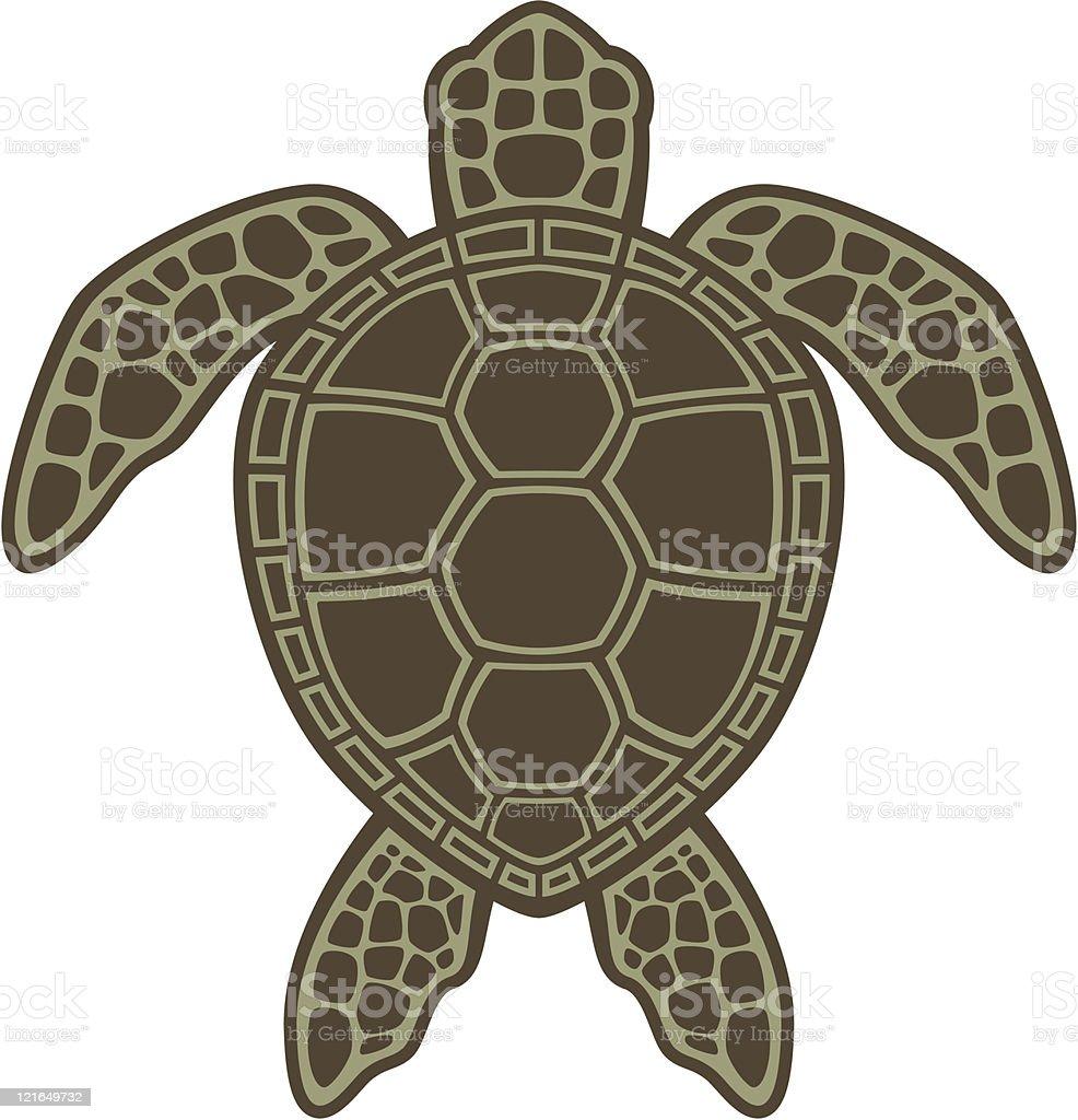 Green Sea Turtle vector art illustration