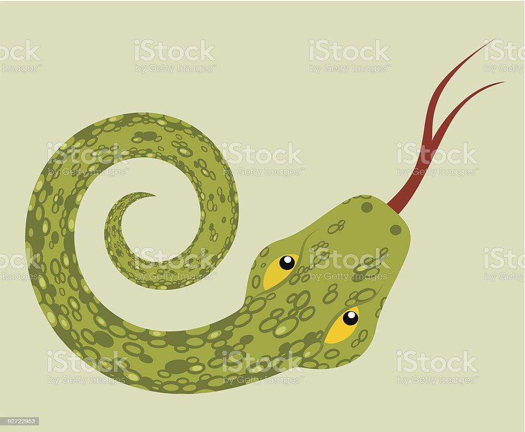 green snake vector art illustration