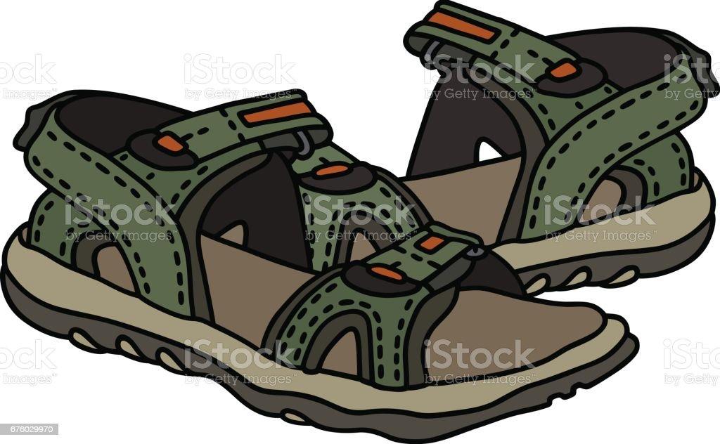 Green sport sandals vector art illustration