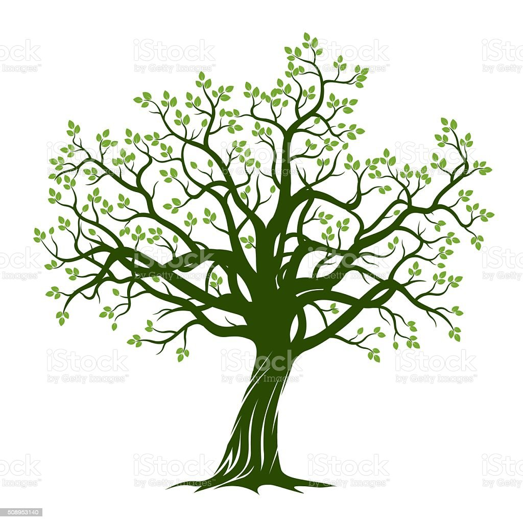 Green Spring Tree. Vector Illustration. vector art illustration