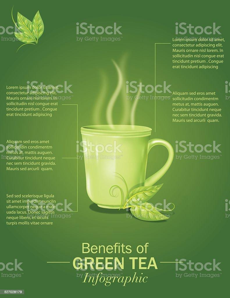 Green Tea Infographic vector art illustration