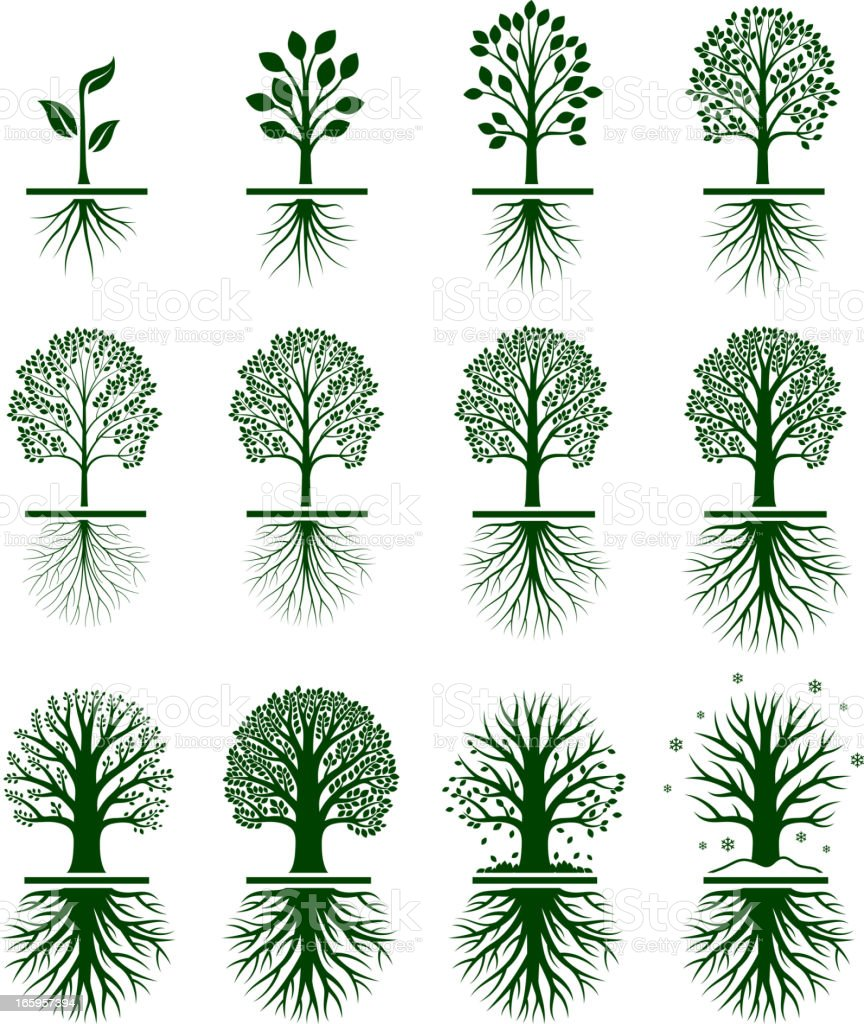 Green Tree Growing in nature vector icon set vector art illustration