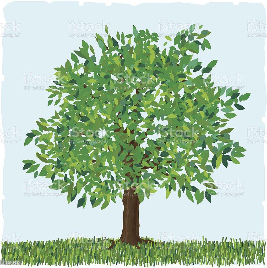 Green tree vector art illustration