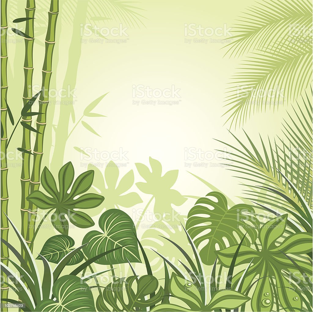 Green tropical design background royalty-free stock vector art