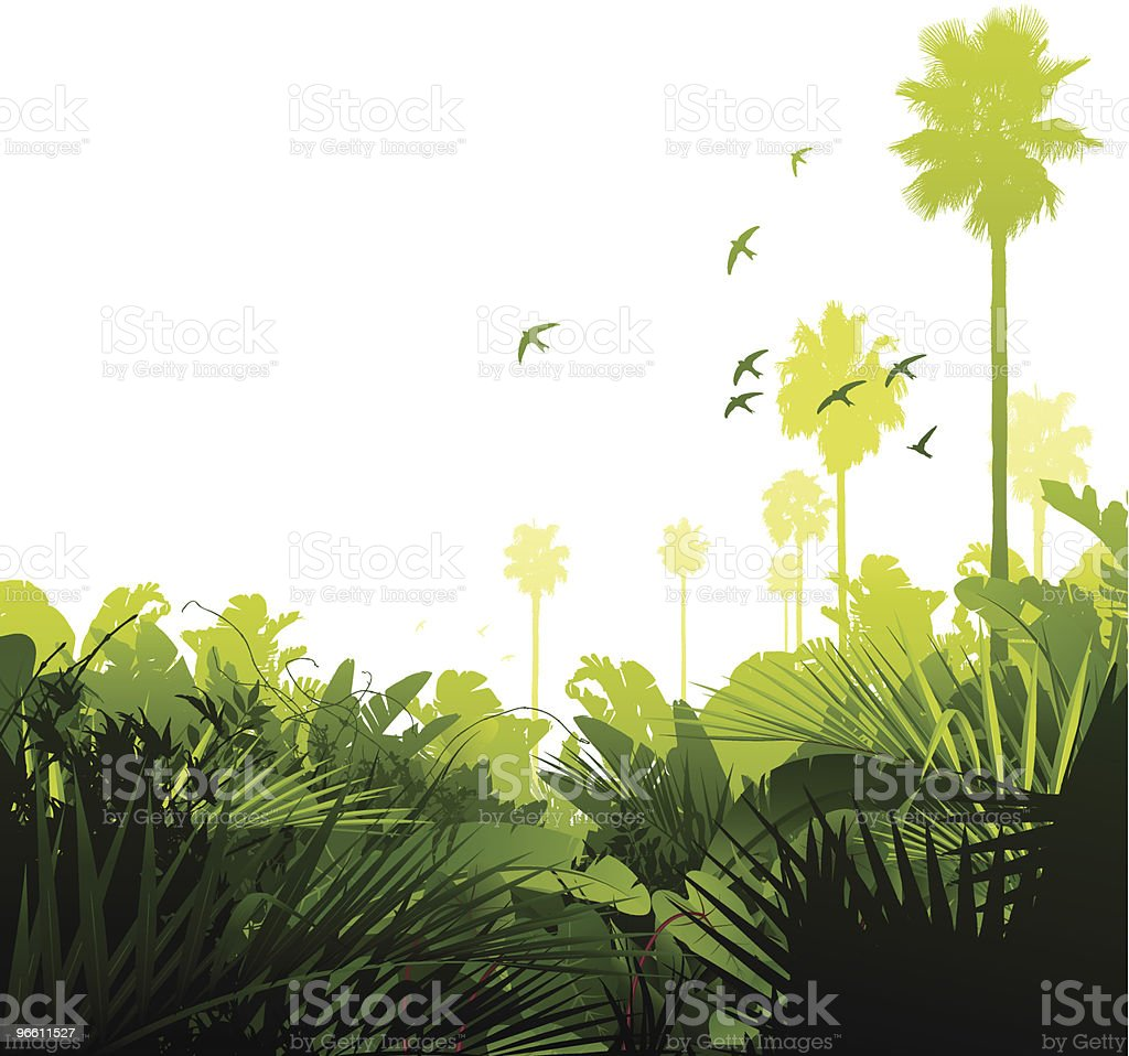 Green tropical jungle vector art illustration