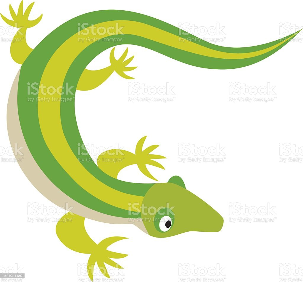 Green water dragon lizard nature animal reptile cartoon silhouette...