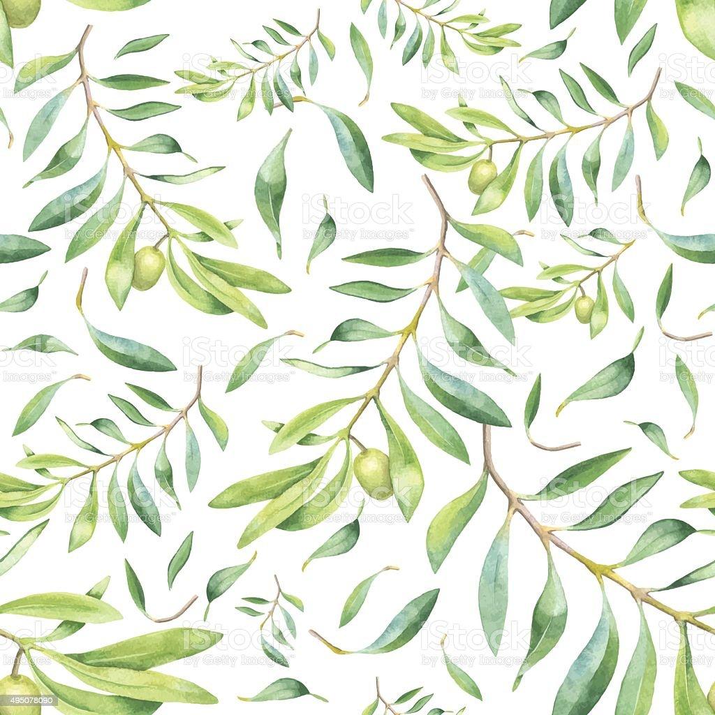 Green watercolor olive branch vector art illustration
