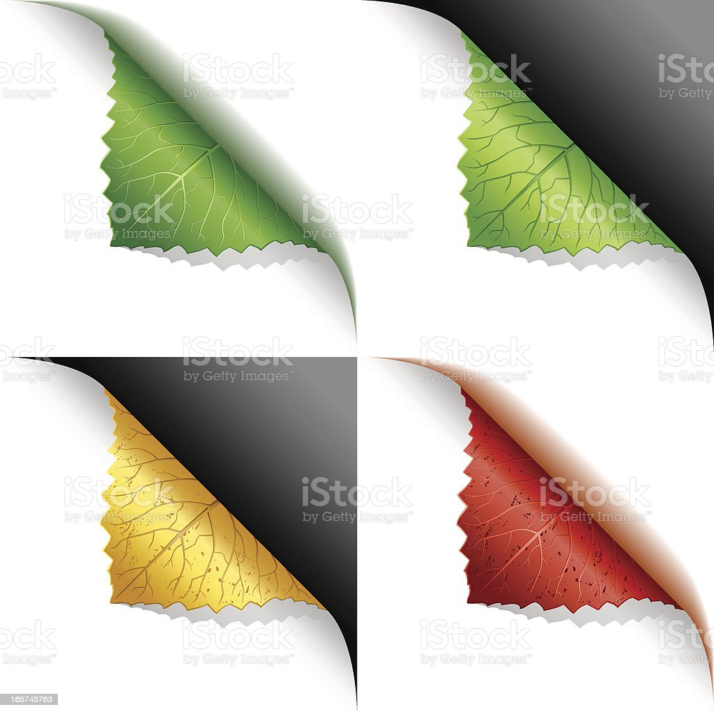 Green, yellow, red leaf corner page curl vector art illustration