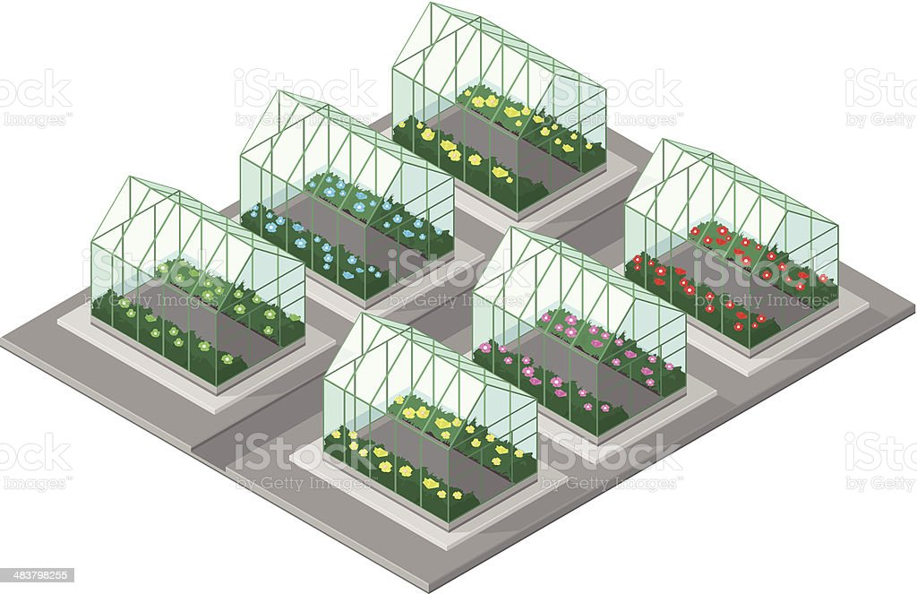 Greenhouse with plants and flowers vector art illustration