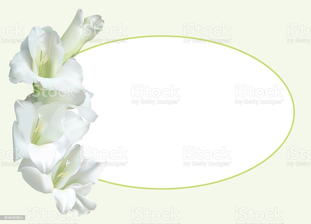 Greeting card with white gladiolus vector art illustration