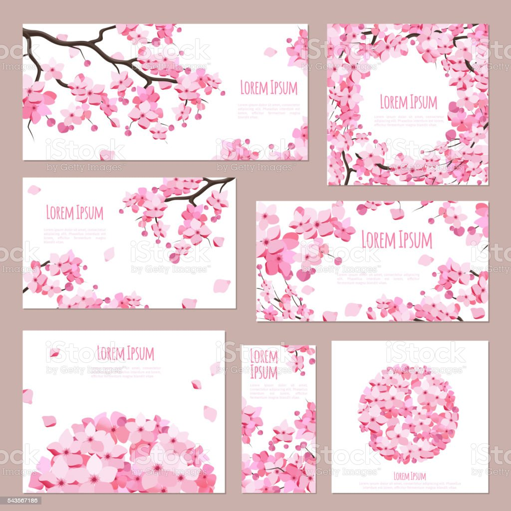 Greeting cards with blossoming sakura vector art illustration