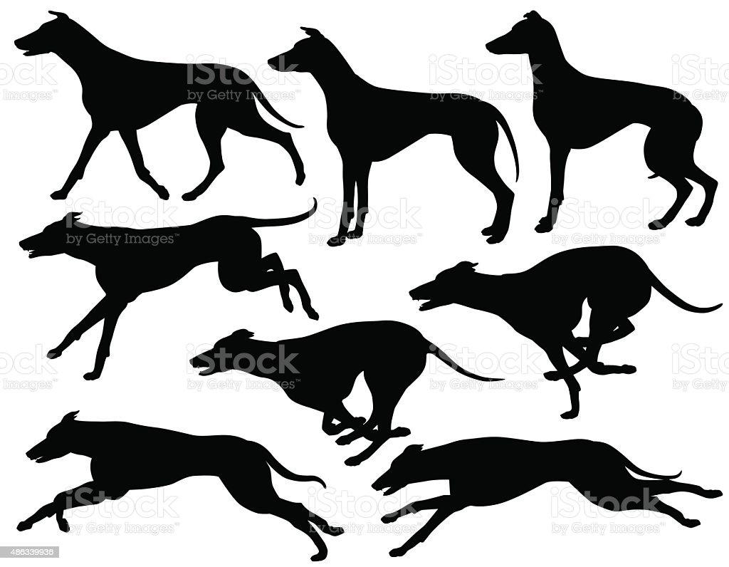 Greyhound dog silhouettes vector art illustration