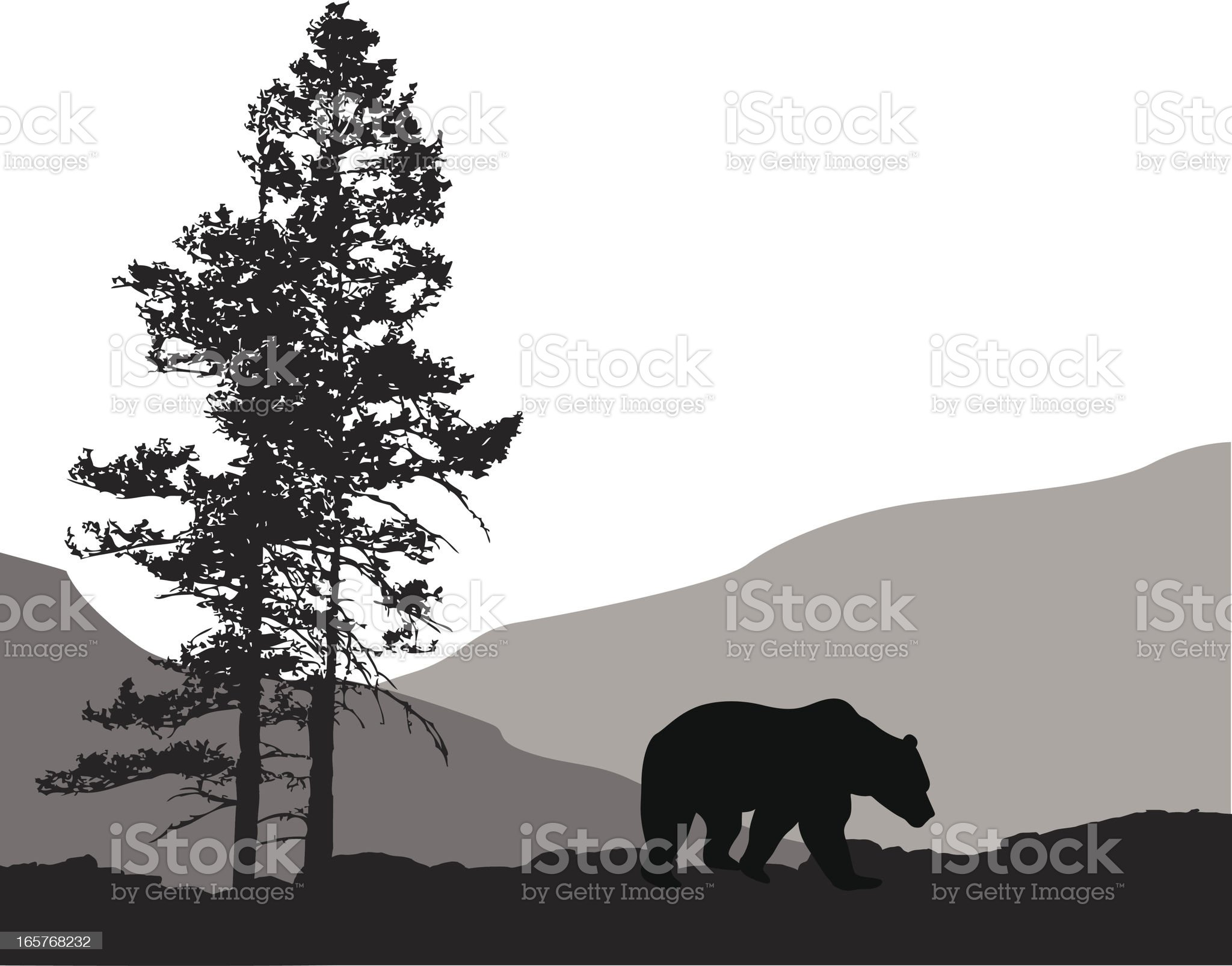 Grizzly Country Vector Silhouette royalty-free stock vector art