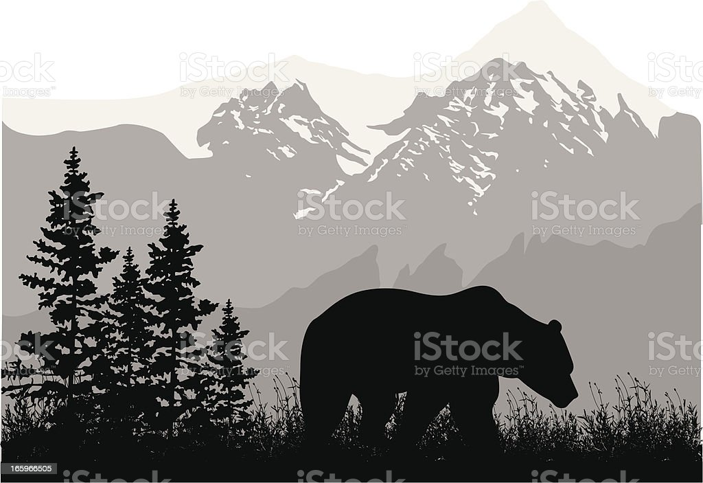 Grizzly Mountains vector art illustration