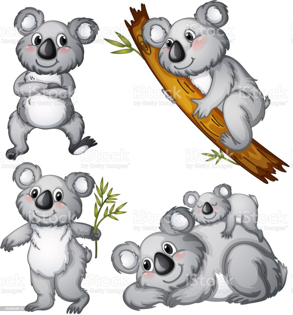 Group of koalas vector art illustration