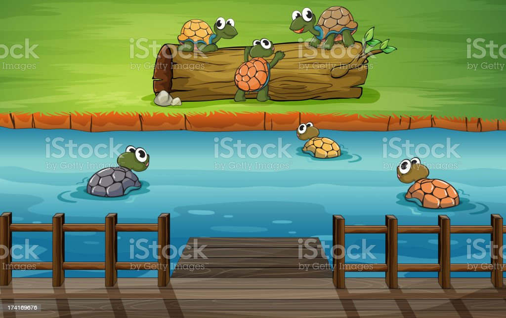 group of turtles at the river royalty-free stock vector art