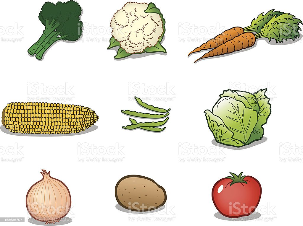 Group of Vegetables vector art illustration