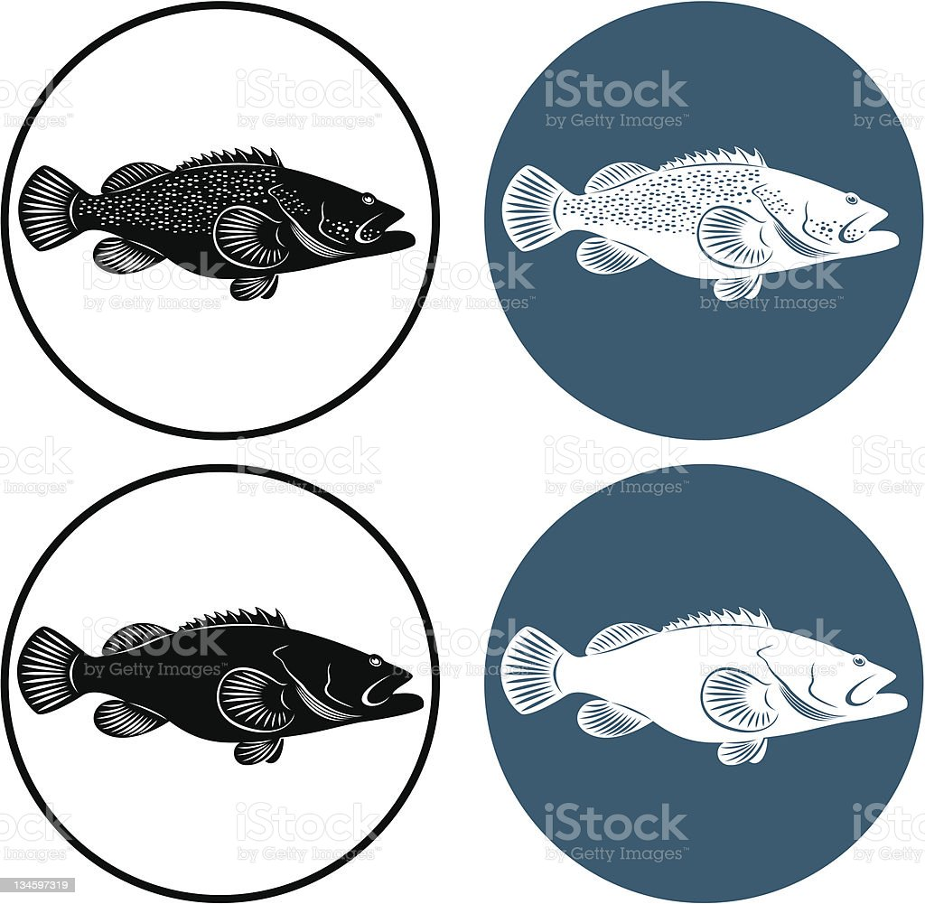 grouper royalty-free stock vector art