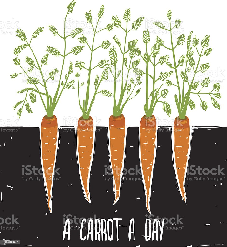 Growing Carrots Scratchy Drawing and Lettering vector art illustration