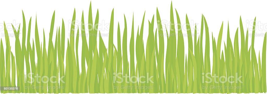 Growing Grass (+jpg in ZIP) royalty-free stock vector art