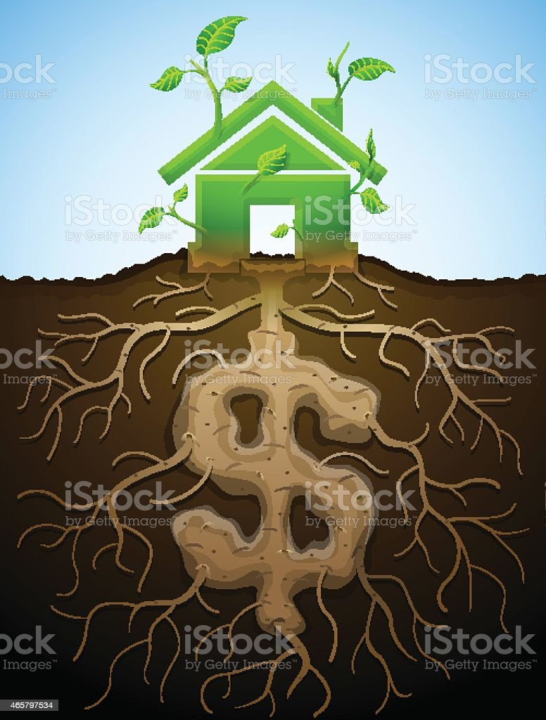 Growing house sign like plant with leaves and dollar like root vector art illustration