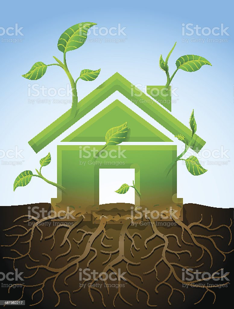 Growing house symbol like plant with leaves and roots vector art illustration