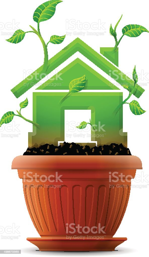 Growing house symbol like plant with leaves in flower pot vector art illustration