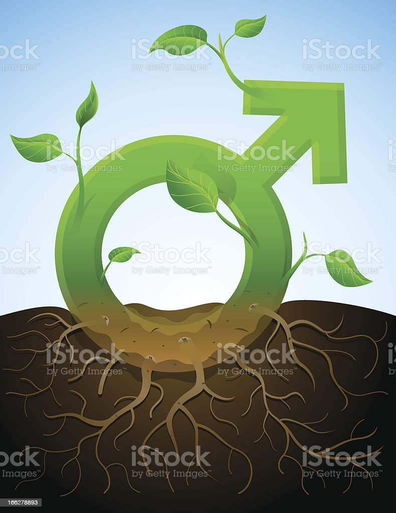 Growing male symbol like plant with leaves and roots royalty-free stock vector art