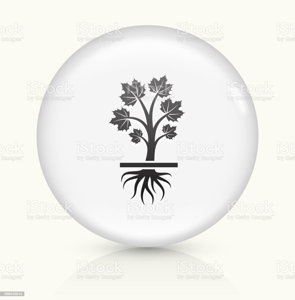 Growing Maple icon on white round vector button vector art illustration